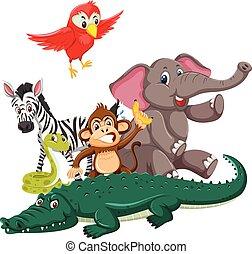Group of wild animals