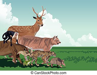 group of wild animals in the field