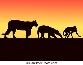group of wild animals silhouettes in the sunset landscape