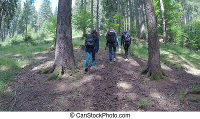 Group of young and healthy people hiking through woods