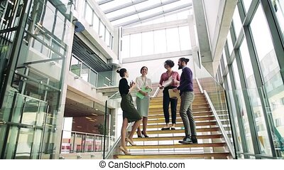 Group of young businesspeople standing on a staircase,...