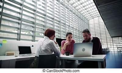Group of young businesspeople working together in office, talking.