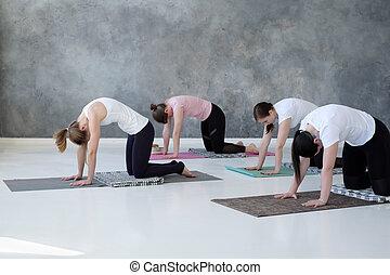 young caucasian women practicing yoga doing pilates exercise.