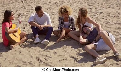 Group of young friends relaxing on the beach