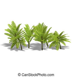 group of young palm trees - 3D render with clipping path and...