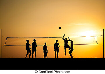 volleyball - group of young people igoat in volleyball on...