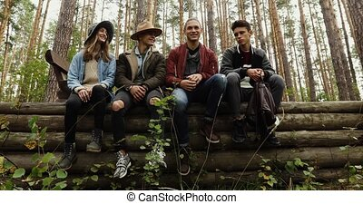 Group of young people sitting on logs - Four young people in...