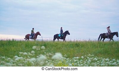 Group of young riders on horseback galloping forward the...