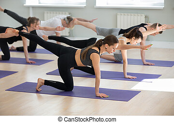 group of young sporty people in uttanasana pose group of