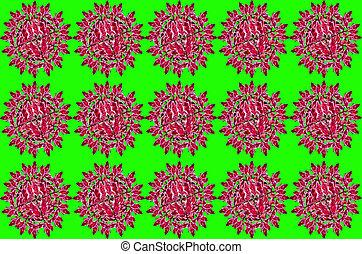 Redbird Cactus - Group Redbird Cactus background on green ...