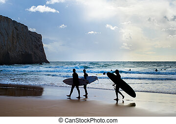 Group surfers surfboards beach Portugal