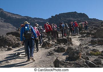 Group trekking on Machame route Kilimanjaro - A group...