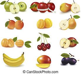 groupe, à, différent, sorts, de, fruit