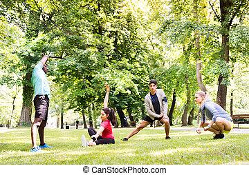 groupe, étirage, jeune, haut, park., coureurs, chauffage