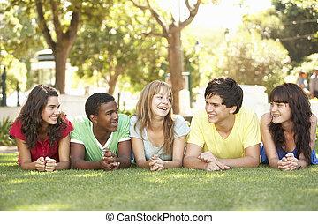 groupe adolescents, mensonge, sur, estomacs, dans parc