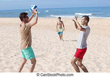 groupe, filles, jeune, volley-ball, jouer, plage, joyeux