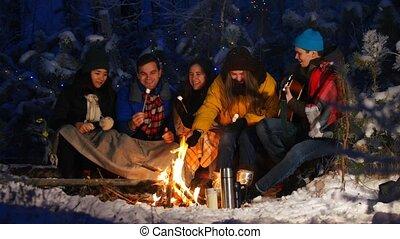 groupe, hiver, guimauve, séance, guitar., ensemble, jouer, forest., amusement, manger, amis, avoir, feu