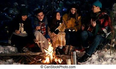 groupe, hiver, séance, amis, brûler, forêt, guimauves, manger, chant, chansons