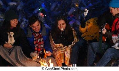 groupe, hiver, séance, dépenser, ensemble, forest., temps, manger, amis, feu, marshmallow.