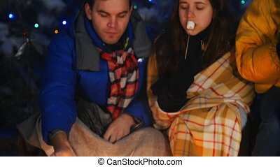 groupe, hiver, séance, dépenser, haut, forest., manger, ensemble., temps, amis proches, feu, marshmallow.