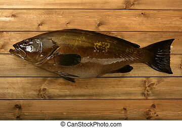 Grouper fish seafood, fishing catch over wood - Grouper fish...