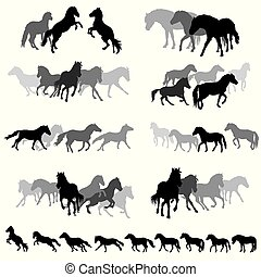 Groups of isolated horses silhouettes-3