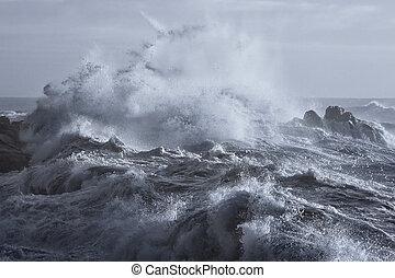 grov, hav, på, den, kust