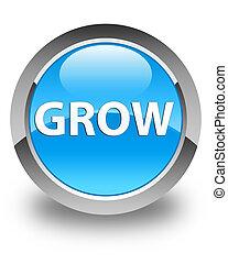 Grow glossy cyan blue round button