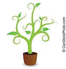 grow., planta, começando, potted