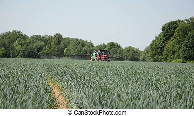 growht crop - farm tractor field crop spraying crops with...