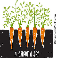 Growing Carrots Scratchy Drawing and Lettering - Bed of...