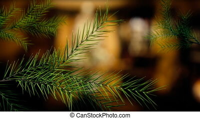 Growing Christmas tree branches - Spruce or firtree branches...