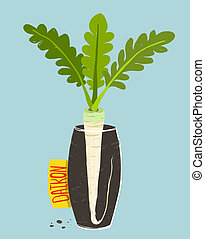 Growing Daikon Radish with Green Leafy Top in Vase - Root...