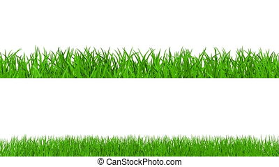 Growing grass with alpha channel - Growing green grass on...