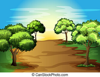 Growing green trees in the forest