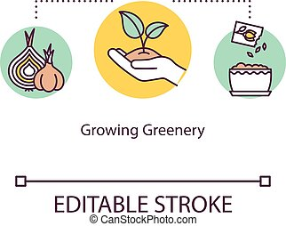 Growing greenery concept icon. Home orangery. Propagating. ...
