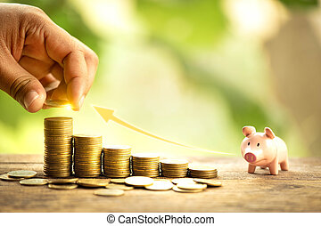 Growing ideas or save money concept. Business management for success. Investment chart. Coins background symbol.