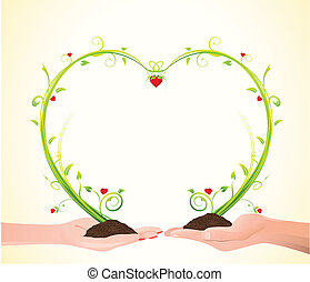 illustration of heart shaped plant growing on palm of male and female