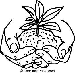 Money Plant Doodle