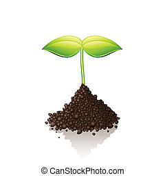 Growing sprout isolated on white vector illustration