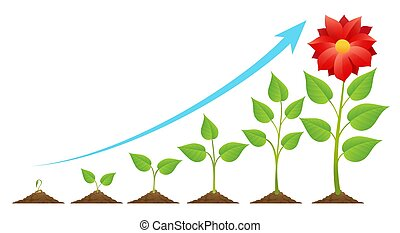 growing plant stages an image of the stages of a growing plant rh canstockphoto com plant grow clipart growing plants clip art
