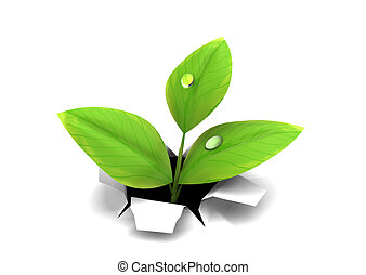 growing thorugh paper - 3d illustration of green plant...