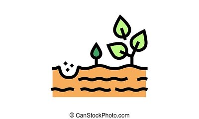 growing tree color icon animation