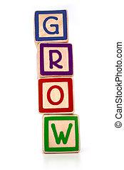 Isolated children's building blocks spelling grow