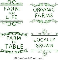 grown., table, lines., éléments, vie, isolé, locally, organique, main, dessiné, typographique, white., ferme, fermes, vert