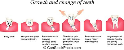 Growth and shift teeth in humans. Stages of development of teeth. Children multiplekatsionny style. Infographics. Vector illustration on isolated background
