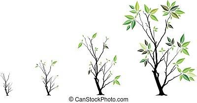 Growth garden - business management concept