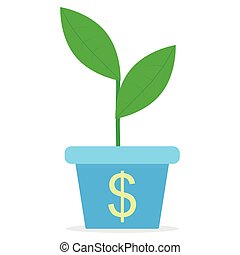 Growth of income. Sprout in a pot