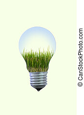 Growth of your idea in electric bulb.