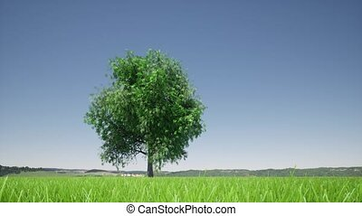 Growth tree on green background. Eco green nature forest background template. Business development.